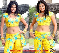Priyamani KOLLYWOOD ACTRESSES Only in Blouse With Out Bra (hotmona4u) Tags: pictures show pakistan hot sexy out photo big breast nipple with image boobs photos pics indian bra pic scene images blouse clevage desi actress bollywood shows slip pakistani boob saree without scenes aunty kollywood nip nipslip mallu actresses bhabhi in nri sarees tollywood