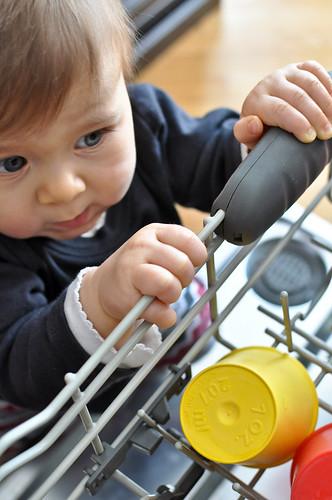 dishwasher-018