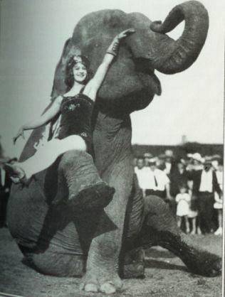 An elephant & a girl