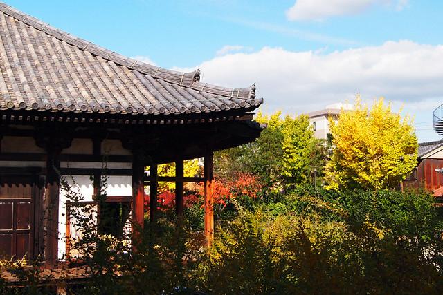 20101116_132410_元興寺