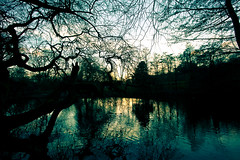Waterlow Park - Winter sunset (Benn...) Tags: park trees winter sunset england lake london water pond unitedkingdom highgate northlondon highgatevillage waterlowpark greaterlondon lpawol