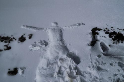 snowsilhouette4242