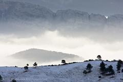 20080103_morning_clouds_0015_AtzeDijkstra (Atze Dijkstra) Tags: mist snow fog clouds spain europa europe sneeuw hill eu wolken catalunya spanje heuvel gisclareny cadimoixer tasconet tasconetenvironment