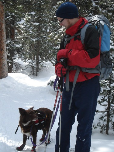The Dog and I in Our Snow Shoes