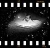 Sternenblumenkind (Mara ~earth light~) Tags: birthday star brother gimp creativecommons ourtime photohosp moodcreations photographymypassion mara~earthlight~ bourtime artwithinportraits