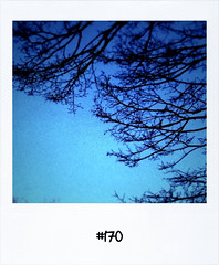 "#Yesterdays #Dailypolaroid #170 #fb • <a style=""font-size:0.8em;"" href=""http://www.flickr.com/photos/47939785@N05/5506990915/"" target=""_blank"">View on Flickr</a>"