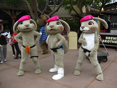 Meeting the Pink Beret Bunnies at Universal Studios (Castles, Capes & Clones) Tags: california losangeles fluffy universalcity hollywood characters hop patch universalstudios bit universalstudioshollywood pinkberetbunnies