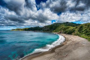 Windy Overlook - (HDR Wellington, New Zealand)