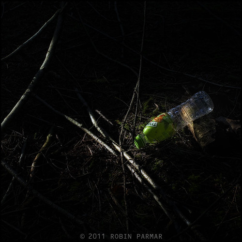 Myths of the New Forest: Detritus #28789
