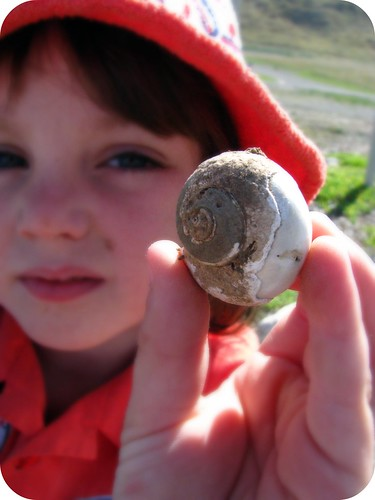 Charlie's first fossil