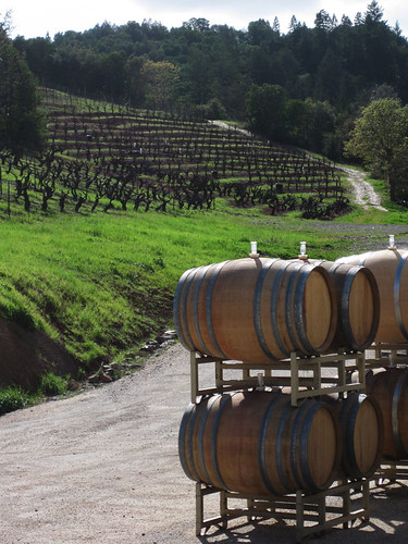 Bella Vineyards, Dry Creek Valley, Geyersville, CA