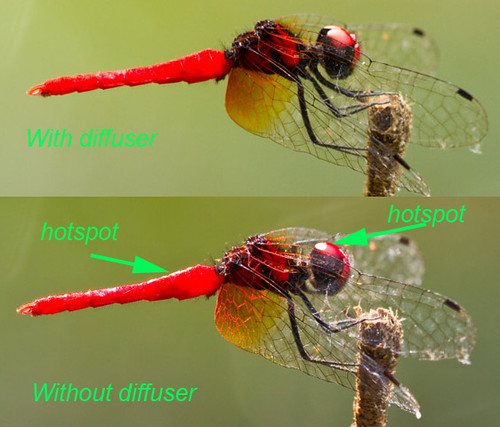 with and without diffuser comparison