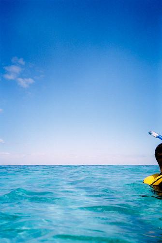 Snorkler, John Pennekamp, Key Largo Florida