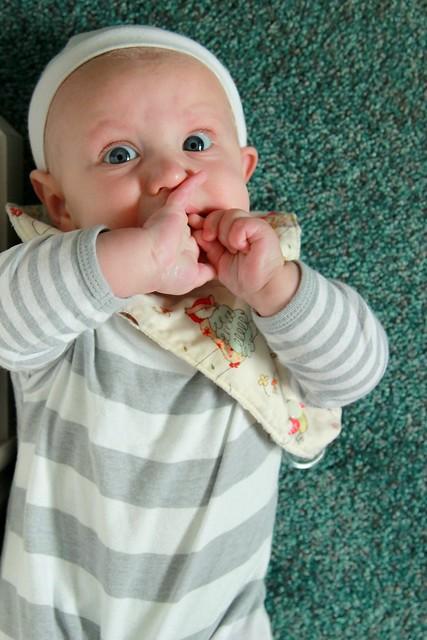 the baby gentleman
