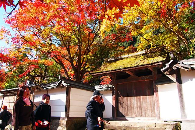 20101119_130847_室生寺