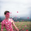 a diffusion of being (brianoldham) Tags: pink flowers boy flying petals wind being floating 365 diffusion rosepetals fallingapart disintegrating brianoldham