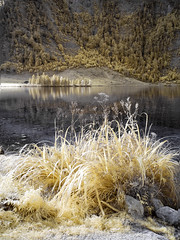 Knigssee (Pixeleater) Tags: 2016 bavaria bayern infrared infrarot knigssee september