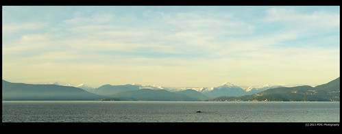 North Vancouver Mountains