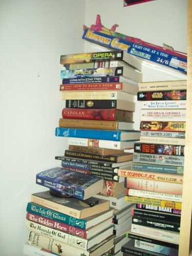 Bookshelves 30