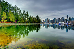 Nature Speaks, Vancouver, Canada (Ireena Eleonora Worthy) Tags: winter urban canada reflection nature vancouver bc britishcolumbia seawall stanleypark westcoast nikond700 mygearandme northernstraitsphotography