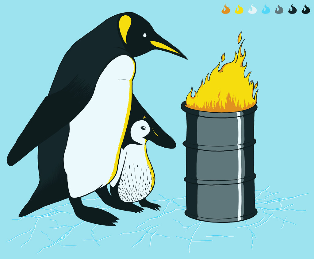 ilustracao pinguins com frio