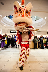 Chinese New Year, Year of the Dragon (Popeyee) Tags: pictures china new uk man rabbit london water photo dance europe foto dragon image photos year chinese performance lion picture chinesenewyear dancer images newyear celebration perform february feb celebrate lunar bilder rabit liondance 2012 yearoftherabbit yearofdragon chinesenewyear2012 yearofwaterdragon