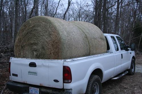 1,800 lbs of hay