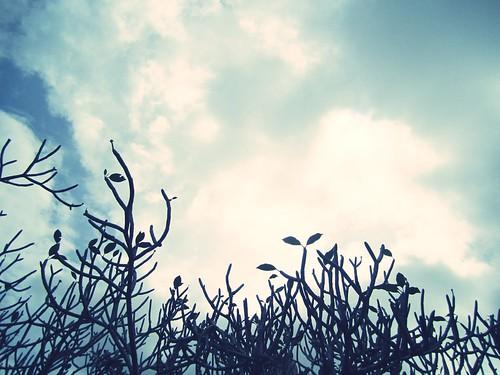 Hot Spring, Ranau