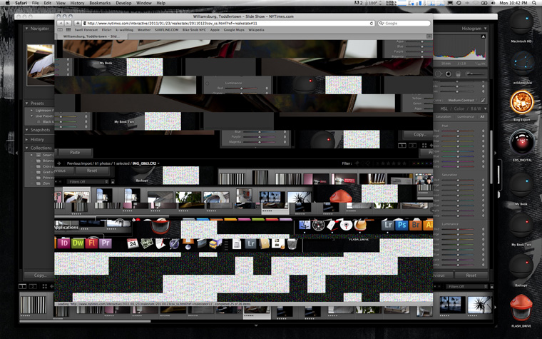 Screen shot 2011-01-24 at 10.42.17 PM
