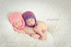 .love. (*miss*leah*) Tags: pink winter girls twins nikon babies purple hats naturallight newborn newborntwins sunggled nikond700 newbornposing leahhoskins professionalnewbornphotographer