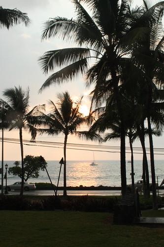 Hawaii3 2011 131