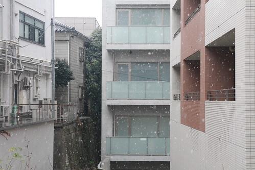 2011年2月11日の雪