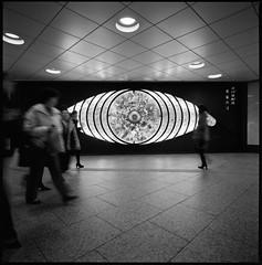 Shinjyuku Monochrome with SWC #001 (go.) Tags: bw 120 6x6 film monochrome japan tokyo 66 shinjyuku swc hassel