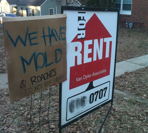 WE HAVE MOLD & ROACHES - DO NOT RENT HERE!!