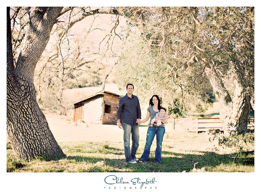 westlake village family portrait in oak tree grove