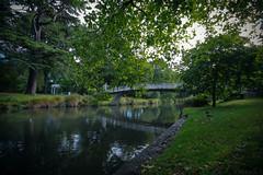 Hagley Park (Fahad-Z) Tags: park new canon sigma zealand 1020mm 1020 hagley    50d           fahadz cristchruch