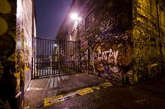 Wet Graphitti (Ben Millett) Tags: city urban dublin wet lowlight nikon graphitti top20dublin benmillett d7000