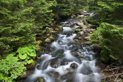 ... (Wael Massalkhi) Tags: river waterfall slovakia tatras nd8 tatramountain