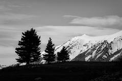 (Flash Parker) Tags: travel winter newzealand mountains tourism adventure glaciers southisland laketekapo starchaser digitaltravel flashparkerphotography newzealand450902x