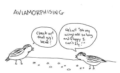 Aviamorphizing 1