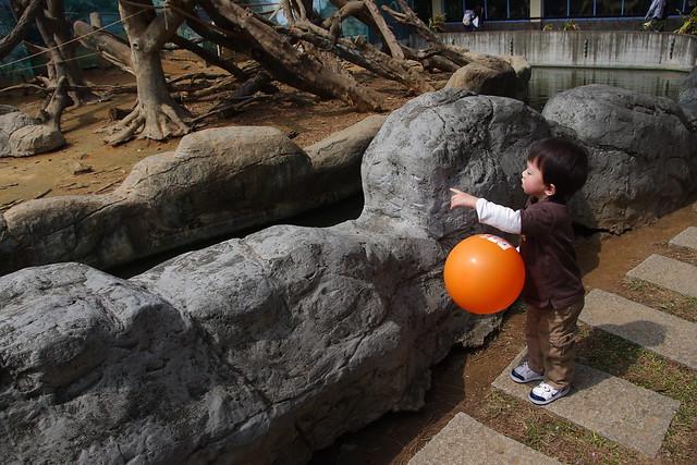 新竹動物園 by KX + 18-250