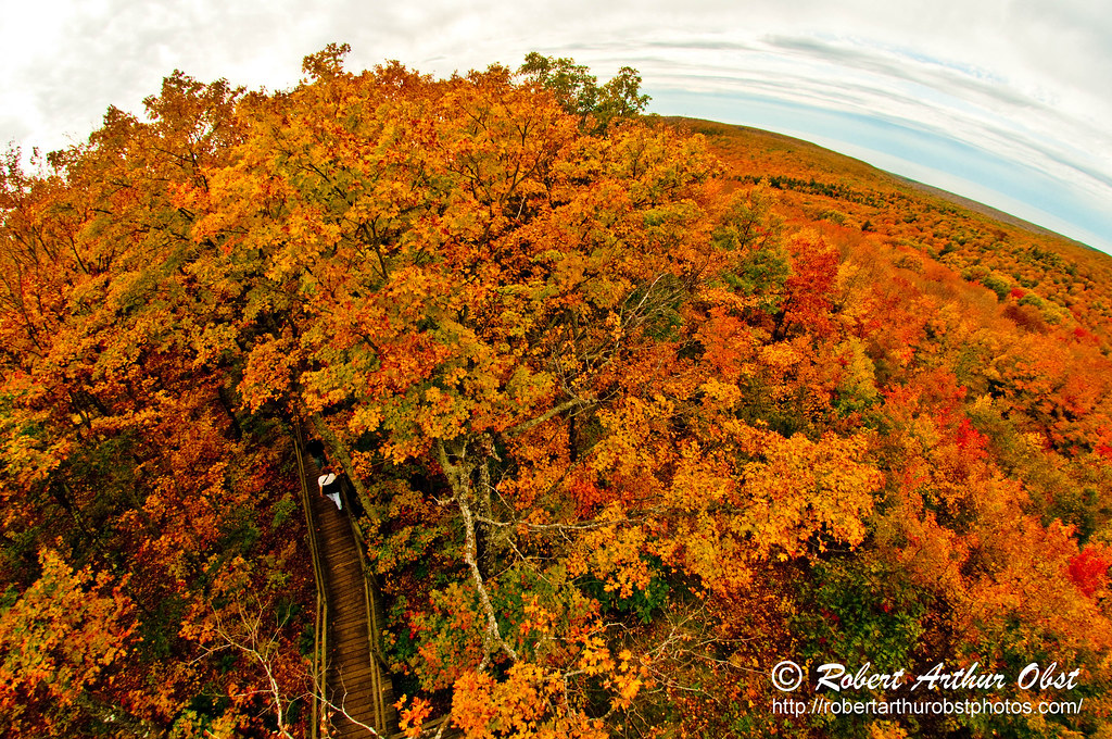 The Wilderness Society Wild Adventures Photo Contest - Hiker's enjoying blazing autumn foliage by Summit Creek Scenic Area Observation Tower within Porcupine Mountains Wilderness State Park (USA MI On