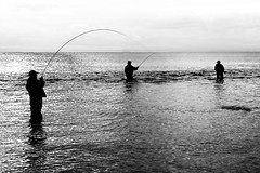 Catch salmon trout during fly fishing (!.Keesssss.!) Tags: sea newzealand sky people blackandwhite silhouette horizontal outdoors photography fishing day adult flyfishing anticipation adultsonly fishingrod royaltyfree threepeople leisureactivity onlymen waistup threequarterlength horizonoverwater theflickrcolle