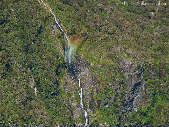 Fiordland-257