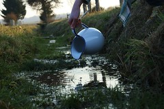 source (yellowtights) Tags: light sun green water field grass reflections stream hand jar