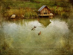 Pond ( Bad Aussee - Austria ) (Lenabem-Anna J.) Tags: platinumheartaward tatot magicunicornverybest