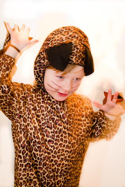 Leoparden min:)