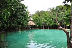 Tailandia (ariannacascinelli) Tags: lake verde green nature beautiful thailand lago tailandia natura tropical vegetazione tropicale paradisi terrestri