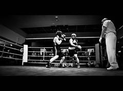 Day 62 Alternates (4 of 4) (Andrew Scott Clarke) Tags: 365 boxing 50mmf18 24mmf28 nikond700 andrewscottclarke nikkornikond700