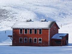 Poultry barn (annkelliott) Tags: old winter red snow canada horizontal barn rural lumix countryside seasons shed alberta pointandshoot backroad ruralscene southernalberta beautifulexpression poultrybarn annkelliott dmcfz40 fz40 poultryshed southwestofcalgary panasonicdmcfz40 p1000987fz40